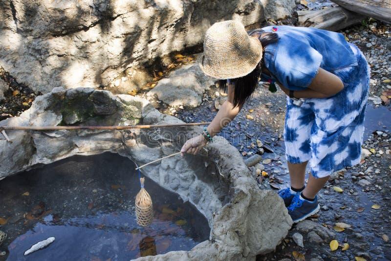 Femme thaïlandaise faisant cuire des oeufs d'ébullition en source thermale de source thermale de PA Tueng en Chiang Rai, Thaïland photo stock