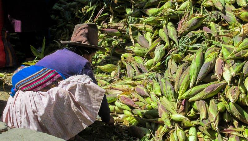 Femme traditionnellement habillée de Péruviens au marché de maïs photos libres de droits