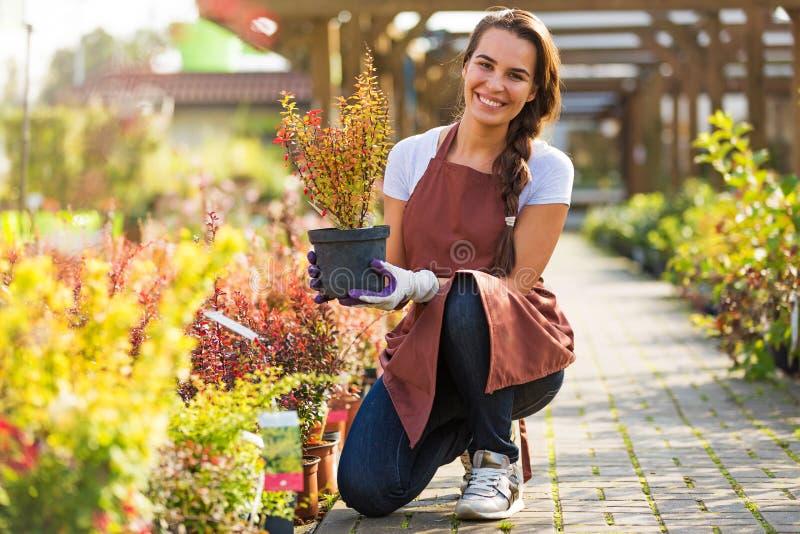 Femme travaillant à la jardinerie photo stock