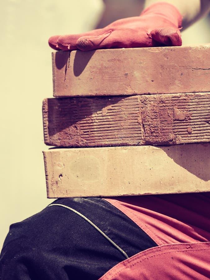 Femme travaillant avec des briques photographie stock libre de droits