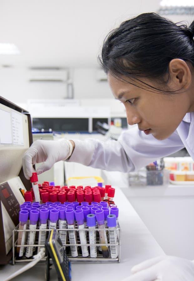 Femme travaillant dans un laboratoire photo stock