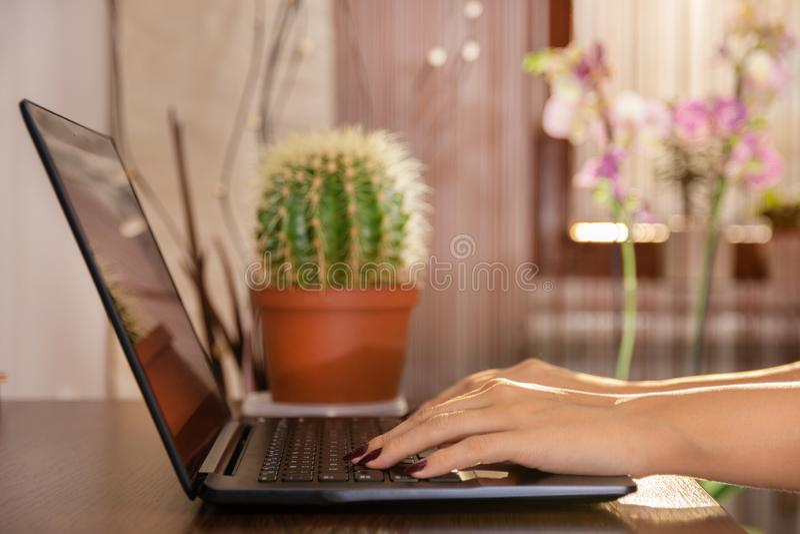 Femme travaillant ? la maison la main de bureau sur l'ordinateur portable photo libre de droits