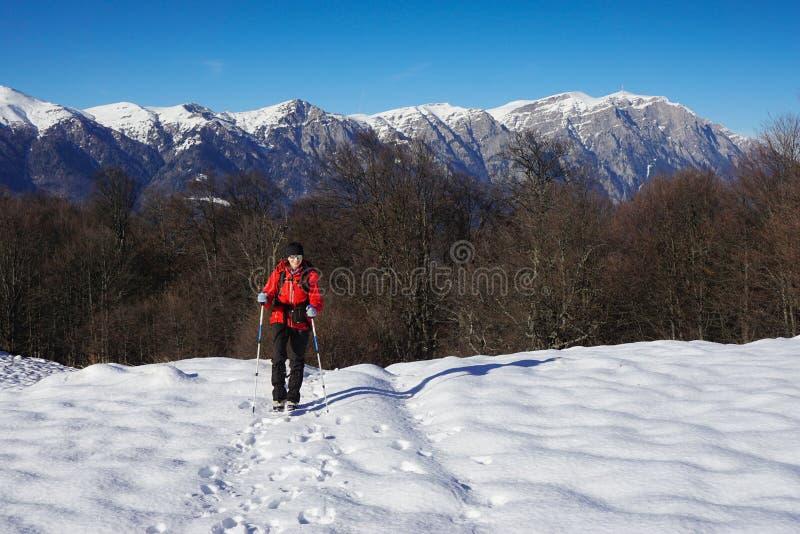 Femme trimardant pendant l'hiver image libre de droits