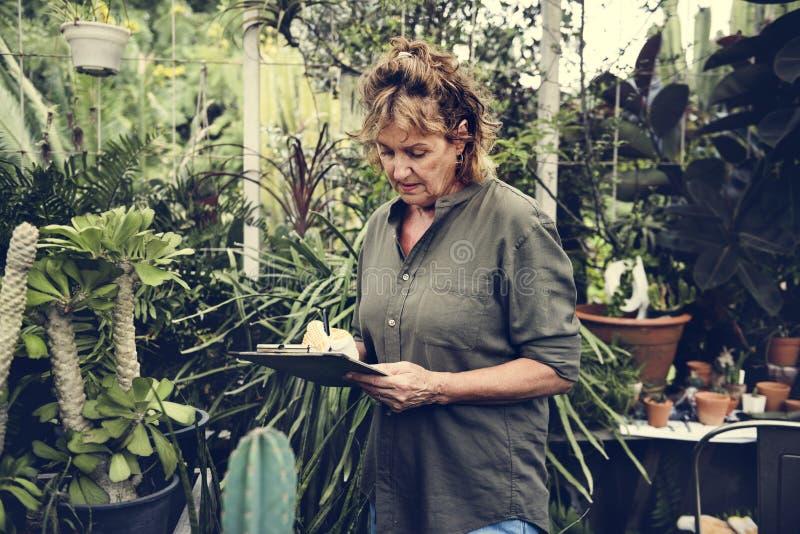 Femme vérifiant le jardin dans l'arrière-cour photographie stock
