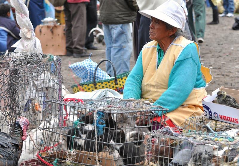 Femme vendant des animaux images stock