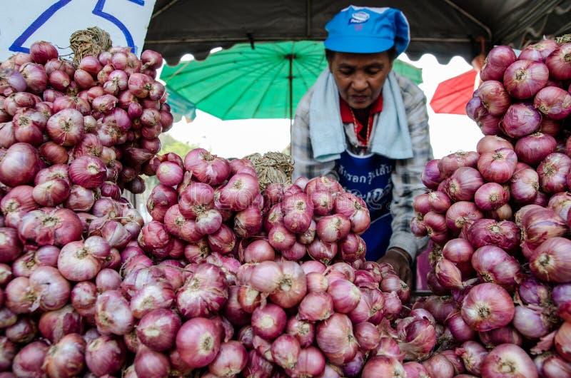 Femme vendant des oignons photographie stock libre de droits