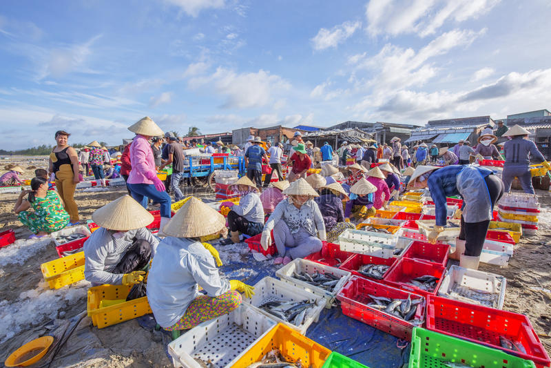 Femme vietnamienne travaillant à la plage à la longue poissonnerie de Hai images stock