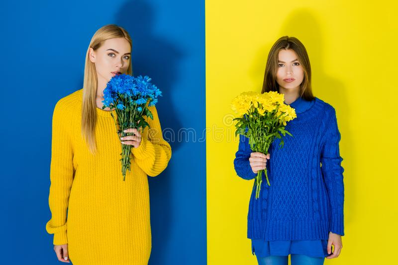 Femmes élégantes élégantes tenant des bouquets de chrysanthème sur le bleu image stock