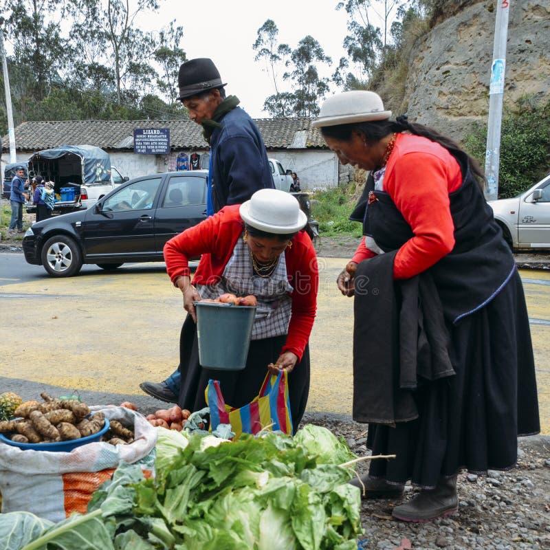 Femmes équatoriennes traditionnellement habillées inspectant des légumes sur un marché photographie stock libre de droits