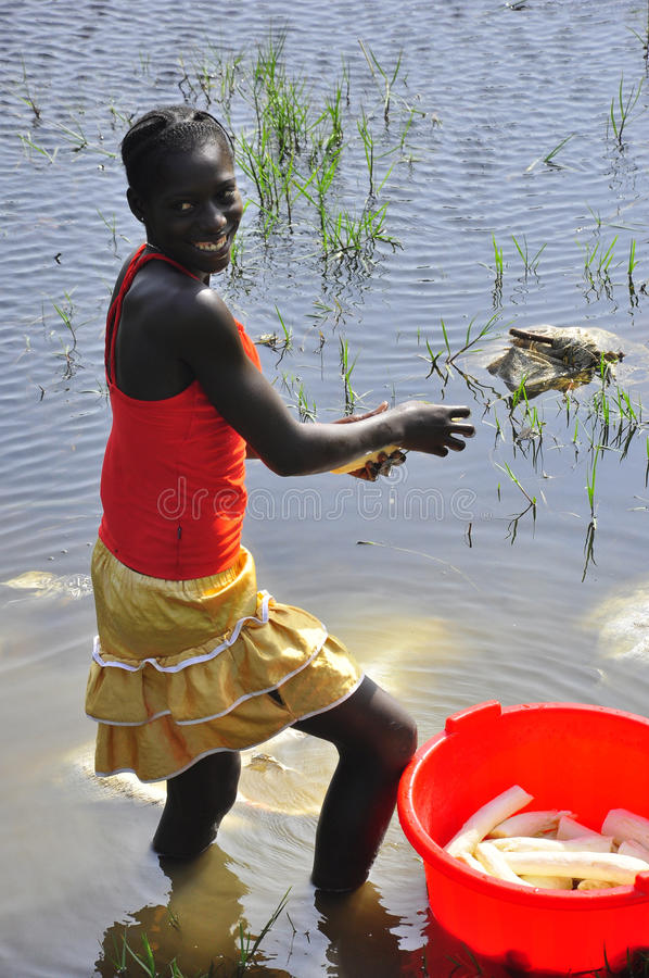 Femmes africaines lavant le manioc dans le fleuve photographie stock