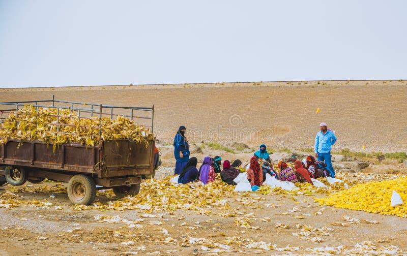 Femmes arabes au travail photo stock