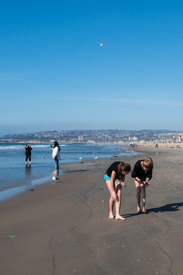 Femmes Beachcombing à la plage de mission à San Diego photos libres de droits