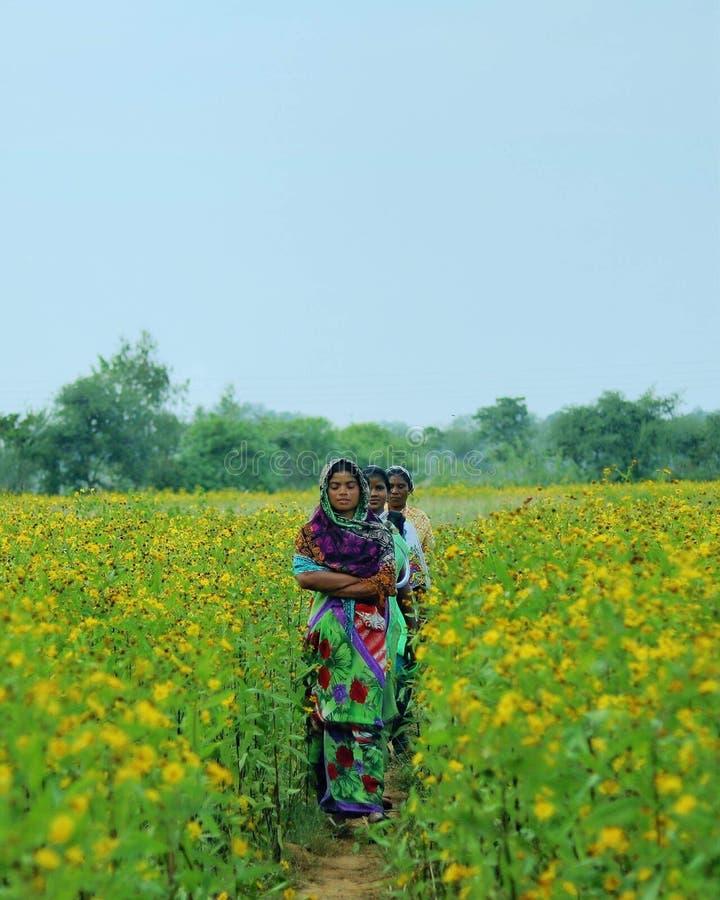 Femmes dans la ferme photo stock