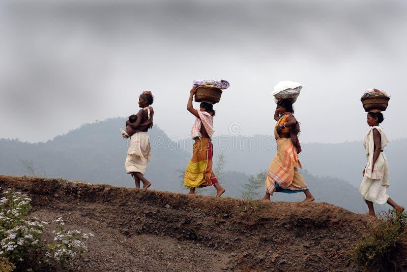 Femmes de tribeâs de Dongria Kondh en Orissa-Inde image stock
