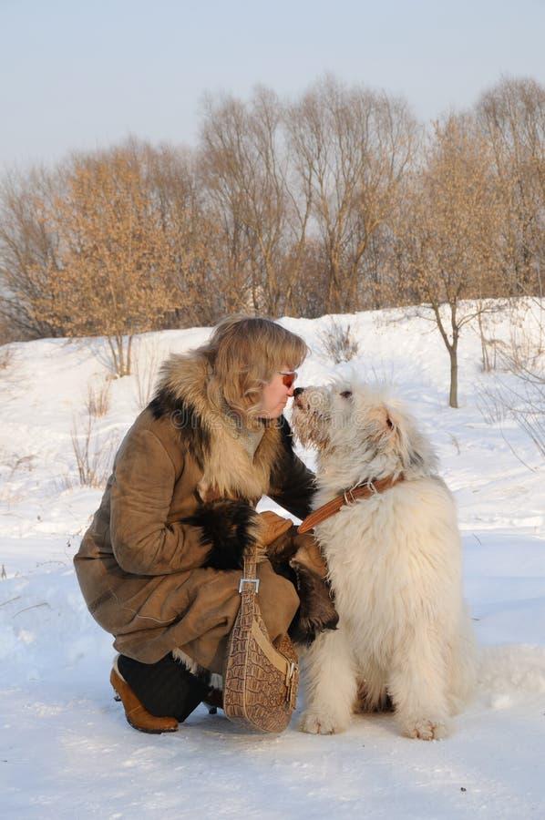 femmes du sud de moutons russes de chiot de crabot photographie stock