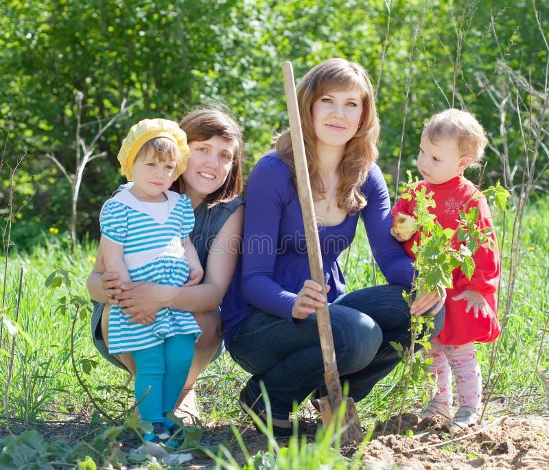 Femmes et bébés plantant la framboise images stock