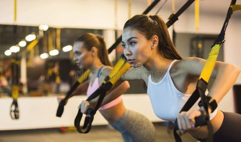 Femmes formant des bras avec des courroies de forme physique de trx images stock