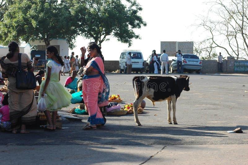 Femmes indiennes sur la rue et une petite vache photographie stock