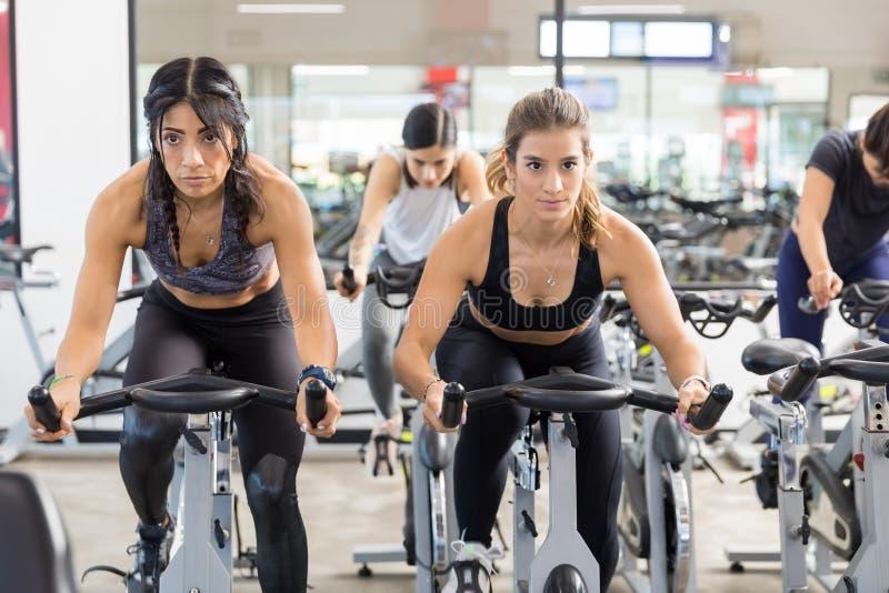Femmes sérieuses s'exerçant sur les cycles stationnaires dans le club de santé image libre de droits