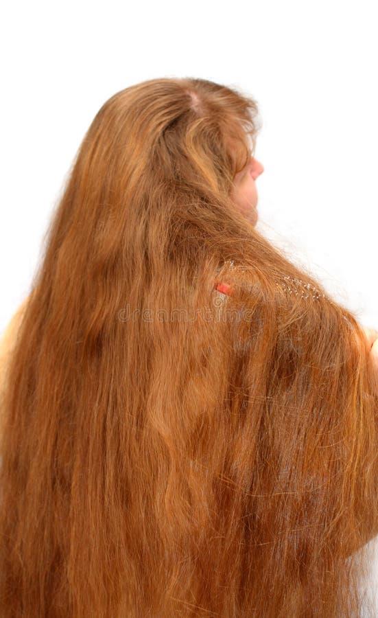 Femmes se peignant le long cheveu rouge photos libres de droits
