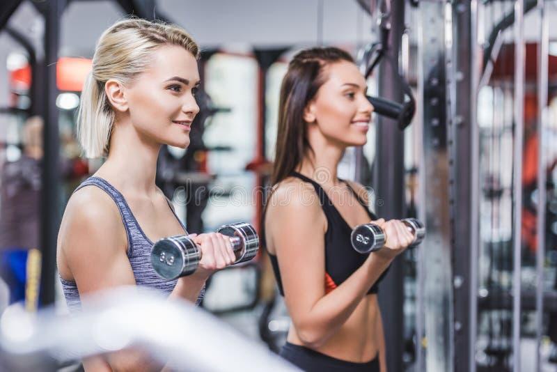femmes sportives attirantes établissant avec des haltères image stock