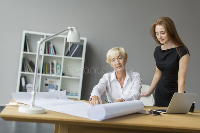 Femmes travaillant dans le bureau photo libre de droits