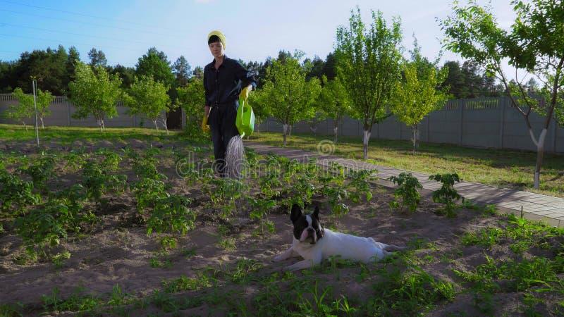 Femmina in uniforme che fa il giardinaggio il giorno soleggiato immagini stock libere da diritti