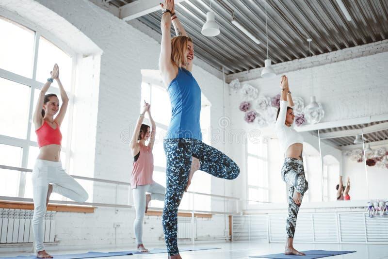 Femmine che traning insieme le pose di yoga in palestra bianca immagine stock