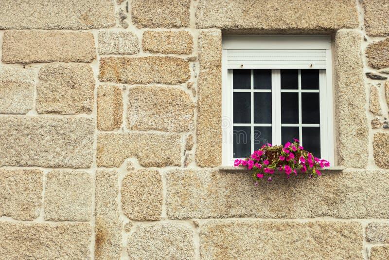 Fenêtre avec le pot de fleur dans le mur de briques Extérieur de bâtiment de grès Architecture et concept de construction extérie photo stock
