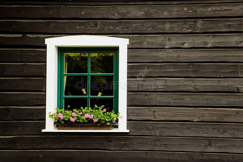 Fenêtre blanche avec les fleurs et le cadre vert sur une maison de campagne ou cottage avec le mur en bois de noir foncé images stock