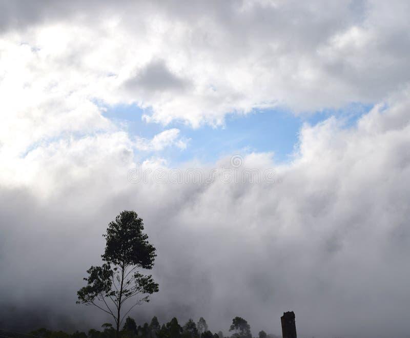 Fenêtre de ciel bleu par les nuages foncés avec la silhouette de l'arbre - fond naturel image stock