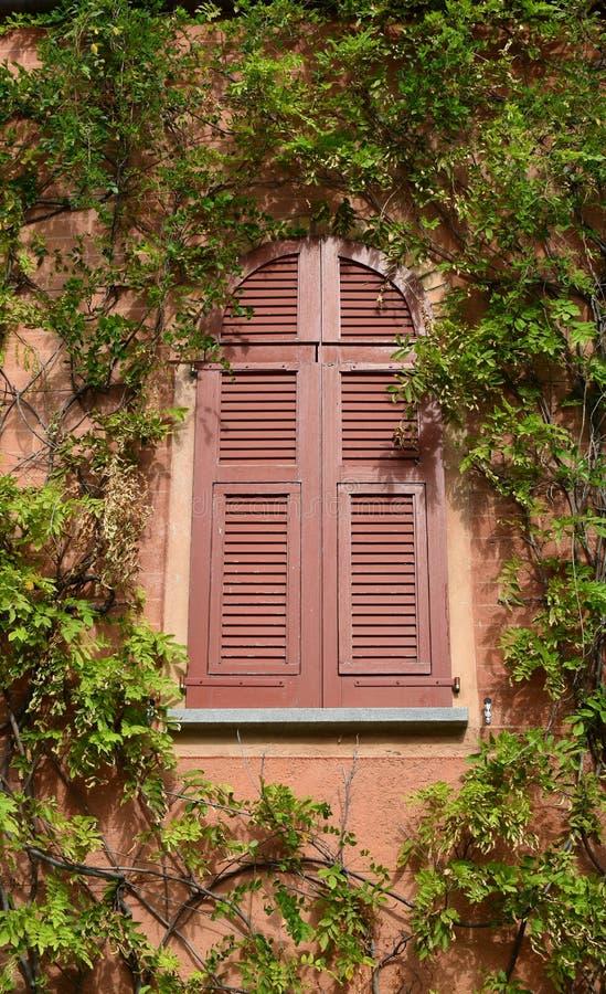 Fenêtre de style italien Village de Gandria image libre de droits