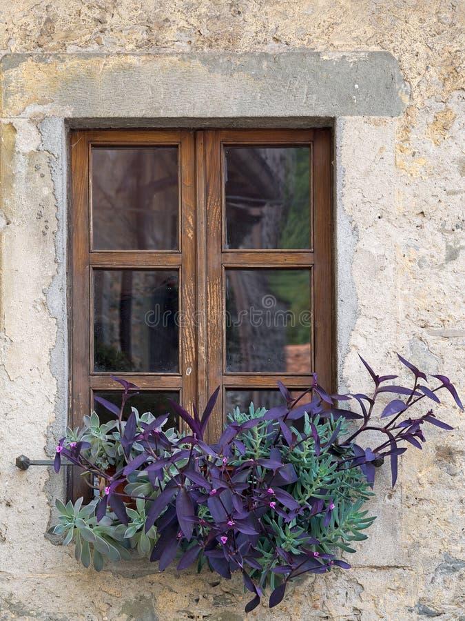 Fenêtre en bois avec des fleurs, y compris des succulents photographie stock libre de droits
