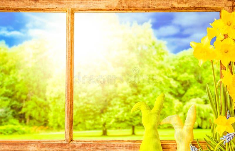 Fenêtre en bois rustique, lapin de Pâques, Sunny Trees, fleurs de ressort images libres de droits