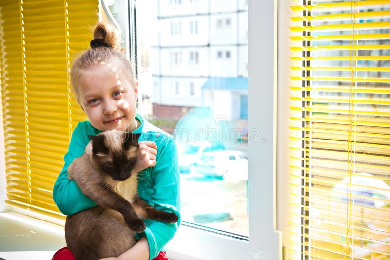 Fenêtre en plastique blanche, aveugles horizontaux jaunes et une fille avec un chat à l'intérieur photographie stock