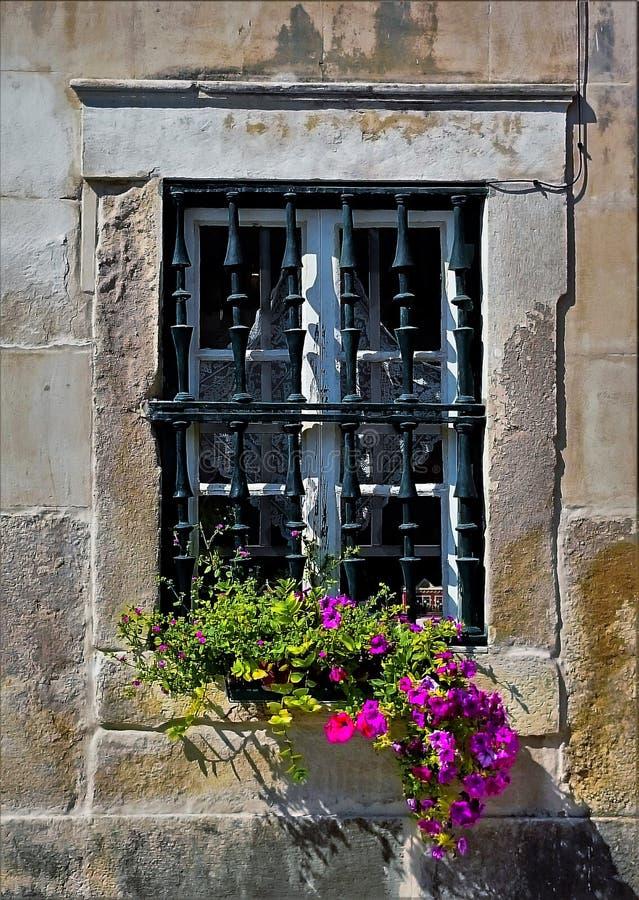 Fenêtre florishing photo libre de droits