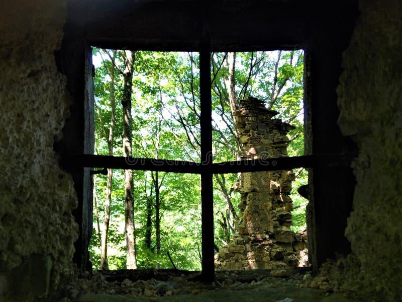 Fenêtre, nature et ruines photo stock