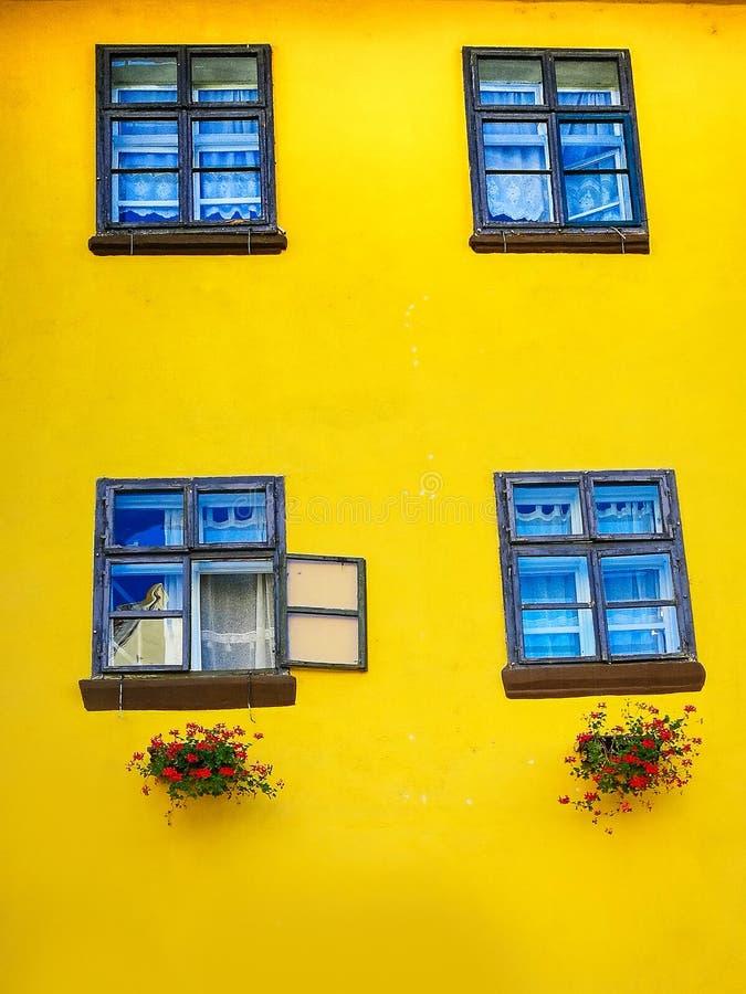 fenêtres ensoleillées photos stock