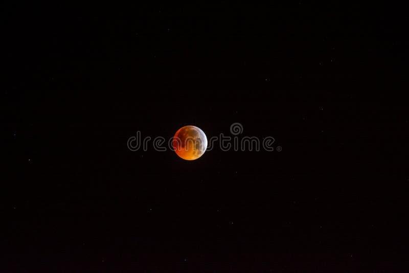 Fenómeno natural hermoso, eclipse lunar y luna estupenda imagen de archivo