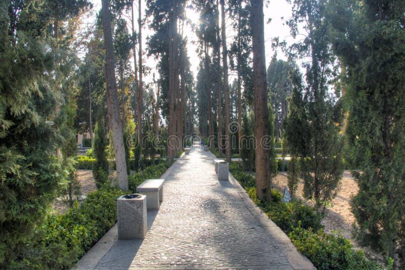 Fenaträdgård i Kashan, Iran arkivbild