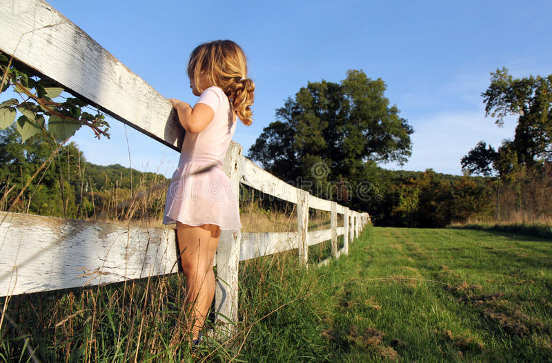 Download Fence stock photo. Image of nature, field, look, child - 24223232