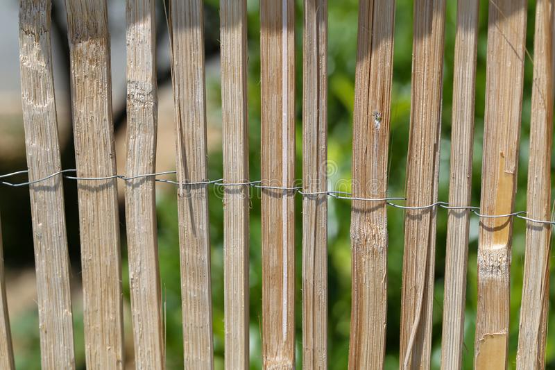 Fence of bamboo sticks fastened with wire stock photos
