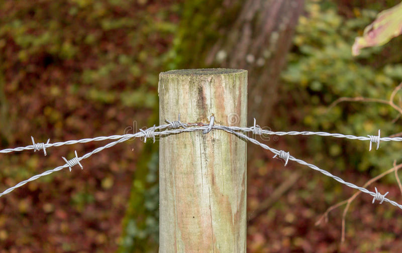 Fence with barbed wire royalty free stock photos