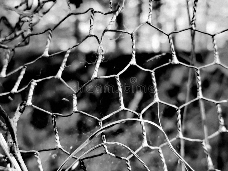 Fence in Black and white stock photos