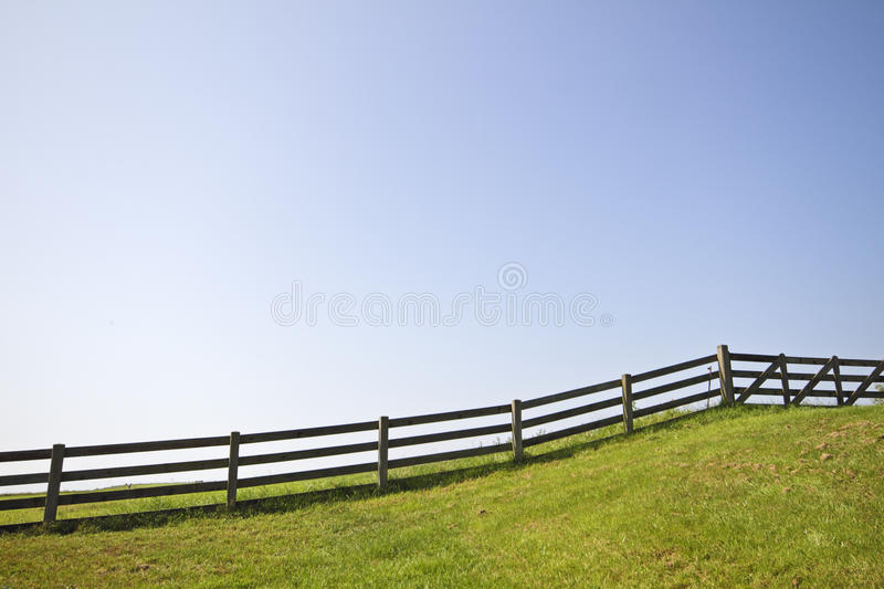 Download Fence and a blue sky stock image. Image of grass, green - 25094031