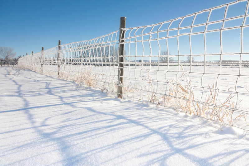 Download Fence Covered in Hoarfrost stock photo. Image of frosted - 63898086