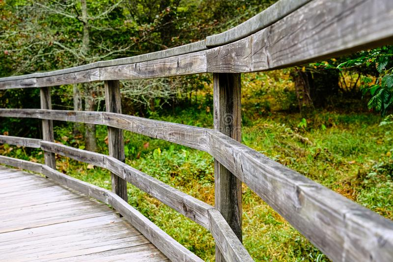 Fence Curving Through Forest stock images