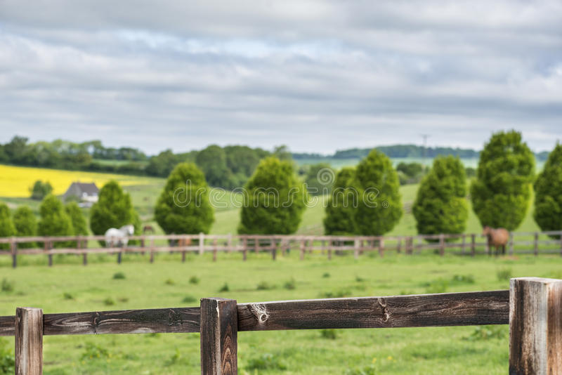 Fence in a English landscape royalty free stock photos