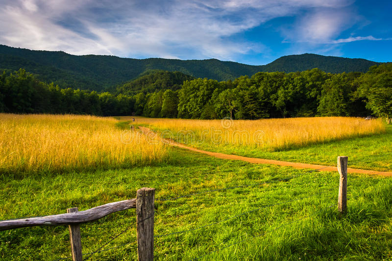 Fence and field at Cade's Cove, Great Smoky Mountains National royalty free stock photo