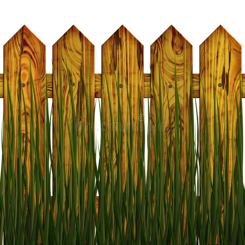 Download Fence in herb stock illustration. Image of fencing, herb - 6383979